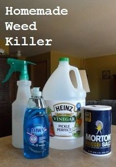 DIY Homemade Weed Killer.  Works great and   no chemicals.  Gallon white vinegar, 1/2 C salt, 1 tsp. Dawn and squirt   away.