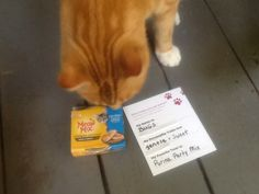 Bugs loves MeowMix Simple Servings #FreeSamp #MyMagazineSharing #ForYourPets