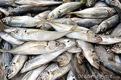 (c) Celia Ascenso - Fresh silver sardines fishes displayed on the market.