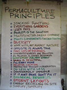 Permaculture Principles