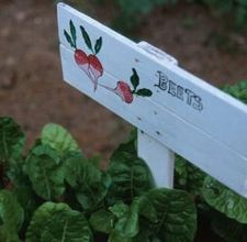 Handmade plant stakes~~~could use paint pens~~~they have held for me in the past out in the garden!