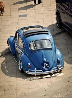 pinterest.com/fra411 #VW Bug----from my dear friend Victor.................