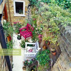 Terracota pots in courtyard garden