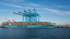 Maersk Kalmar at APM Terminal Maasvlakte-2 #Rotterdam #nlrtm @maersk @apmtmaasvlakte2 @portofrotterdam