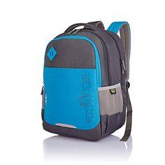 359a5e16b2 Skybags Vortex 33 Ltrs Blue Laptop Backpack (LPBPVOREBLU)