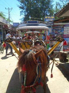 Transport at Gili. Gili Trawangan, Camel, Transportation, Traveling, Animals, Viajes, Animales, Animaux, Camels