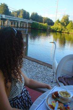 Dining with an egret at the Myakka River Oyster Bar