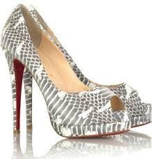 shoe 18