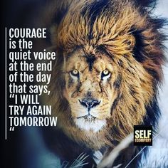 Courage is the voice at the end of the day that says I WILL TRY AGAIN. #courage #strength #strong #discipline #youcandoit #yougotthis #cantstopwontstop #beastmode #lion #workout #workhard #success #wealth #abundance #loa #spiritual #faith #entrepreneur #positivevibes #motivation #inspiration