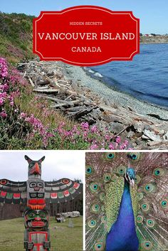 Secrets of Vancouver Island, from Victoria and beyond.