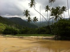 Playa Grande, Choroni, Aragua - Venezuela  Picture by: Alexander Molina