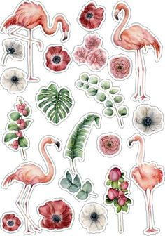 Beautiful stickers with flowers/fruit/animals If you have any questions, ask me :) Printable Planner Stickers, Journal Stickers, Scrapbook Stickers, Laptop Stickers, Cute Stickers, Printables, Tumblr Stickers, Aesthetic Stickers, Sticker Design