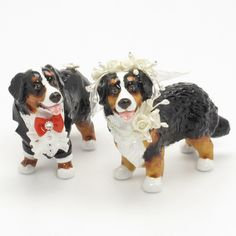 Bernese Mountain Dog Cake Toppers 00002