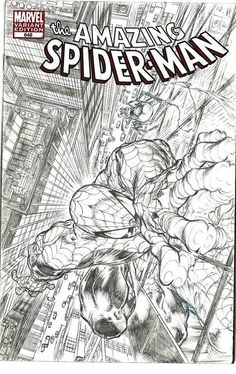 Spider-Man by Angel Medina *