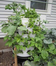 Vertical gardening from The Garden Tower Project