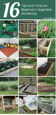 16 easy-to-do tips and tricks for Beginner's - Vegetable Gardening. http://www.hometalk.com/l/jb3