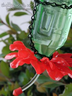 Ok, on the lookout for this style of water bottle.hummingbird feeder using plastic spoons and water bottle? Plastic Spoons, Plastic Bottles, Homemade Hummingbird Feeder, Humming Bird Feeders, Bird Feathers, Bird Houses, Diy For Kids, Wind Chimes, Craft Projects