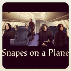 I'm tired of these mothafu*!in Snapes on this mothafu*!in Plane! #thingsharrypottermightsay