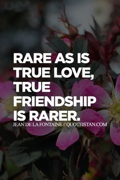 Rare as is true love, true friendship is rarer.