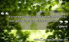 It is more surprising to be born twice than once; everything in nature is resurrection.  #quotes