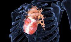 Akut koroner sendromlarda (AKS) hastaların %60' ına yakını hastane öncesi dönemde kaybedilmektedir. Genellikle bu ölümlerin arkasında