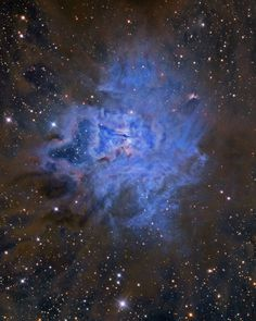 Like delicate cosmic petals, these clouds of interstellar dust and gas have blossomed 1,300 light-years away in the fertile star fields of the constellation Cepheus. Sometimes called the Iris Nebula and dutifully cataloged as NGC 7023 this is not the only nebula in the sky to evoke the imagery of flowers.