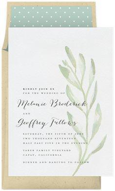 Watercolor Olive Branch by Melissa Egan Design @Greenvelope