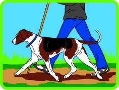 Dog Hiking Patch