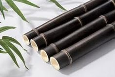 Black Bamboo is my favorite bamboo but then again I love them all. This elegant versatile plant grows profusely looking great in gardens also being used in making of furniture, nappies and socks. Bamboo Poles, Bamboo Fence, Black Bamboo, All Natural Skin Care, Room Colors, Garden Design, Home And Garden, Plants, Gifts