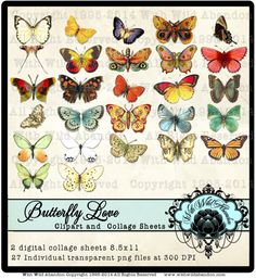 Butterfly Clipart Butterfly Digital Collage by withwildabandon,
