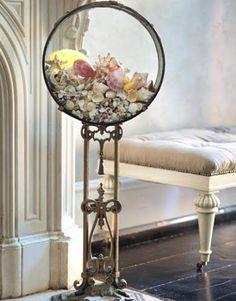 30 Seashell Collection Display Ideas #Home-Decor
