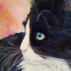 A step by step tutorial shows how I painted this watercolor portrait of my studio assistant Buttonwillow Cat.