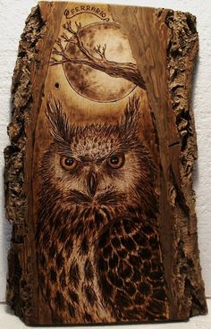 Owl Pyrography art - Artwork by Carlo Ferrario. This is amazing! I love this art form so much :) Más Wood Burning Crafts, Wood Burning Patterns, Wood Burning Art, Wood Crafts, Pyrography Patterns, Wood Burner, Diy Holz, Wooden Art, Owl Art