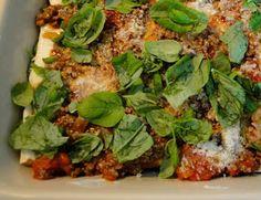 Safkaseireeni: Äärimmäinen lasagne