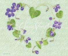 Lang wallpaper | Herb Garden | February 2014