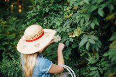 Elderflower ice lollies & sunshine