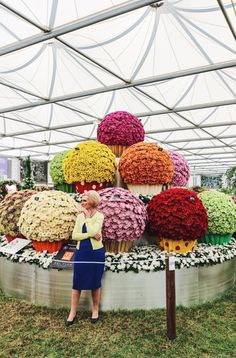 Garden Art: Giant floral cupcakes! An inside look at the 2017 Chelsea flower show in London.