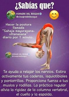 Strategy, methods, together with quick guide with respect to acquiring the greatest outcome and coming up with the optimum use of yoga flow for beginners Kundalini Yoga, Yoga Meditation, Health Education, Physical Education, Chocolate Slim, Yoga Mantras, Yoga Anatomy, Easy Yoga Poses, Sup Yoga