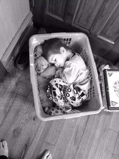 bébé enfant panière à linge chiots                                                                                                                                                                                 Plus