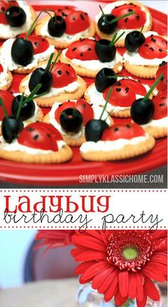 Ladybug Birthday Party Food Ideas and Recipes, Cakes and Cupcakes Comida Baby Shower, Baby Shower Food For Girl, Snacks Für Party, Appetizers For Party, Appetizer Ideas, Ladybug Appetizers, Ladybug Snacks, Cute Food, Good Food