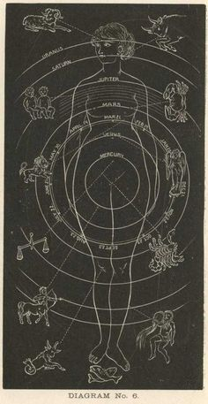 There are no shortcuts in evolution.     Louis D. Brandeis   Astrology and the Body
