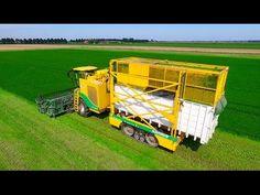 Vezelhennep oogsten met een aangepaste Claas Xerion 4000 VC van DunAgro uit Oude Pekela. Dun Agro bouwde in 2014 twee Claas Xerion trekkers om tot een maai- ...