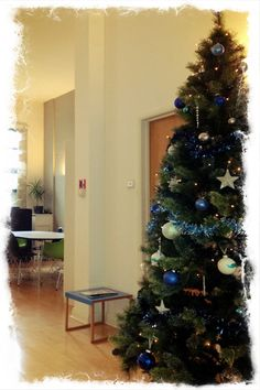 It's officially Christmas at FDG!