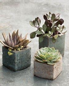 milk carton  Hypertufa's   Pots with a Personal Touch: Hypertufa - Martha Stewart Gardening - Scroll down the page.