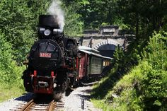 """This is Mokra Gora and the ride on the museum railway """"Nostalgia"""" which passes over the steep sides of Šargan and Rzav Canyon all the way to the Drina. This is the unique attraction in the region, the narrow gauge railway of beauty and pleasure."""