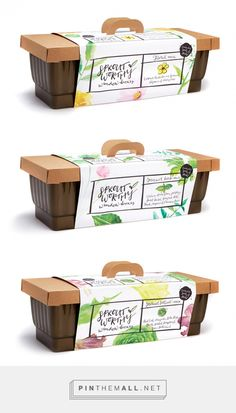 Sprout Worthy window boxes by Sarah Huener. Source: Behance. Pin curated by #SFields99 #packaging #design