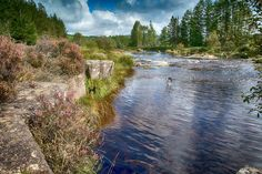 The Otter Pool, Galloway Forest, Dumfries and Galloway, Scotland