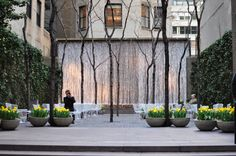 Pocket park in New York City...when in this space you almost forget you are surrounded by tall buildings