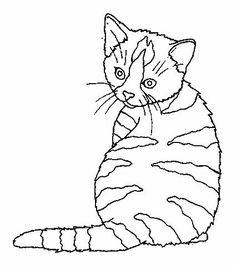 Gatos Colorir Cats Coloring