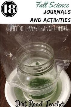 "This fall science unit is easy to use, fun, and meets science standards. Students learn ""Why do leaves change color?"" with experiments and informational texts for close reading. Vocabulary and reading response questions provide rigor. Science Lessons, Science Activities, Science Ideas, Elementary Science, Upper Elementary, Elementary Education, Back To School Teacher, School Stuff, All About Me Activities"